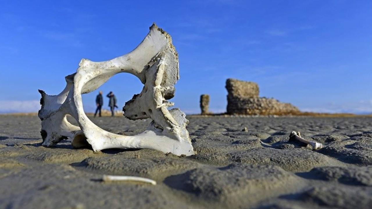 Vekil Gök, Van Gölü kıyısındaki tarihi kalıntıları sordu