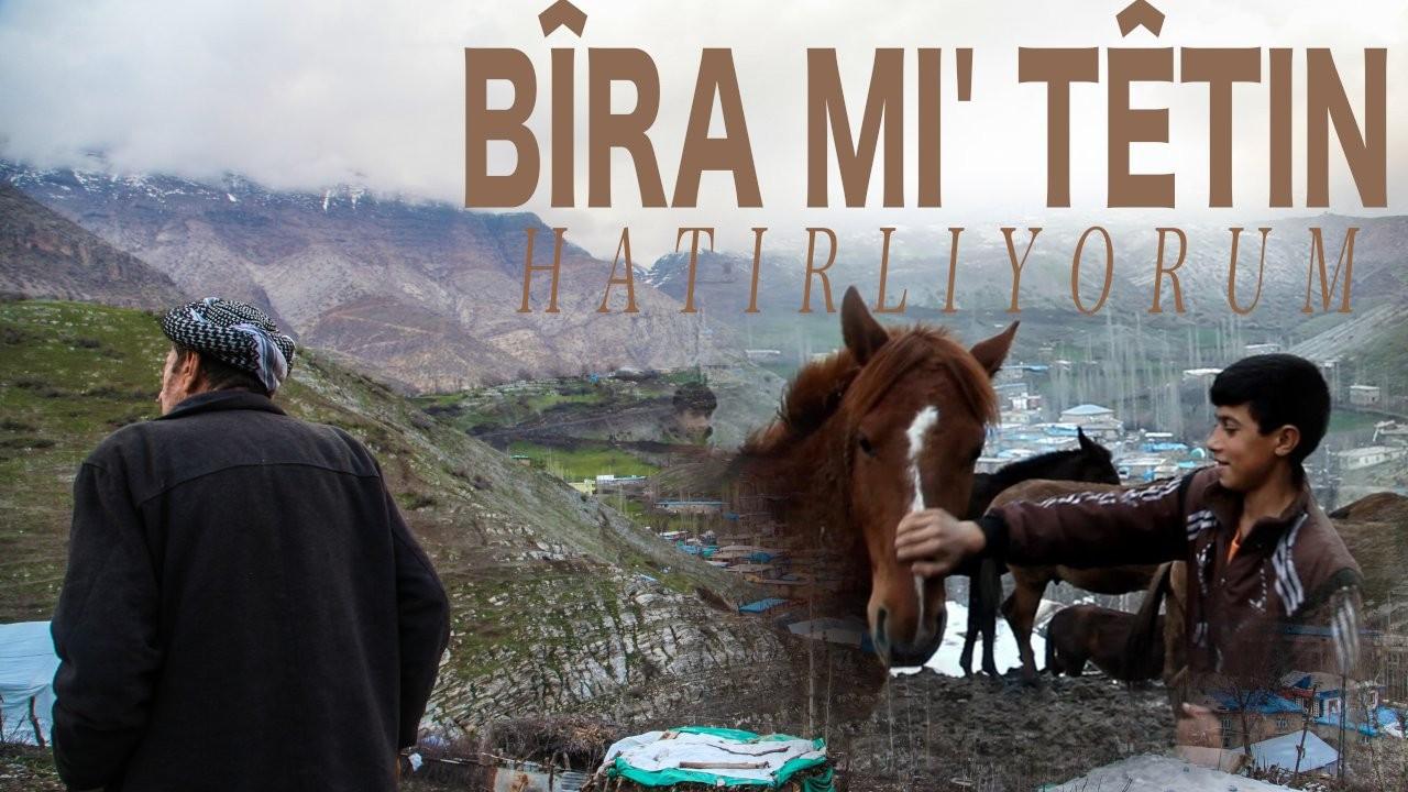 belgesle 4z1H cover