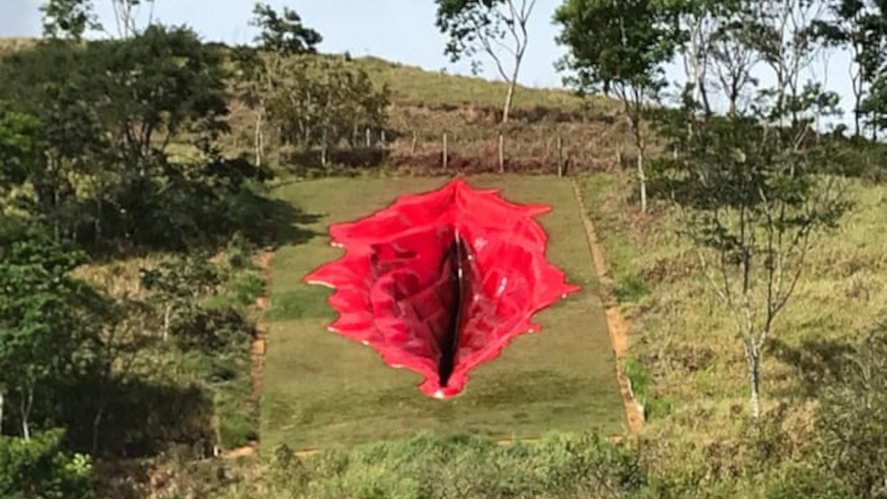 Vajina heykeli Brezilya'da aşırı sağı kızdırdı