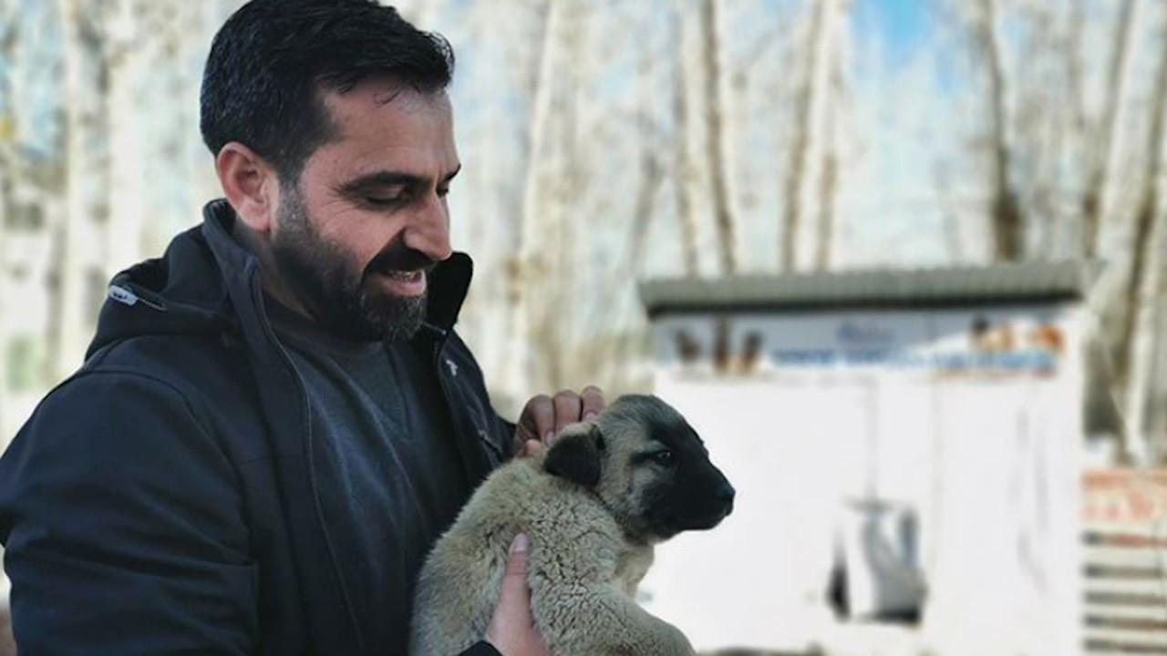 Ovacık Belediyesi makam araçlarını sokak hayvanları için sattı