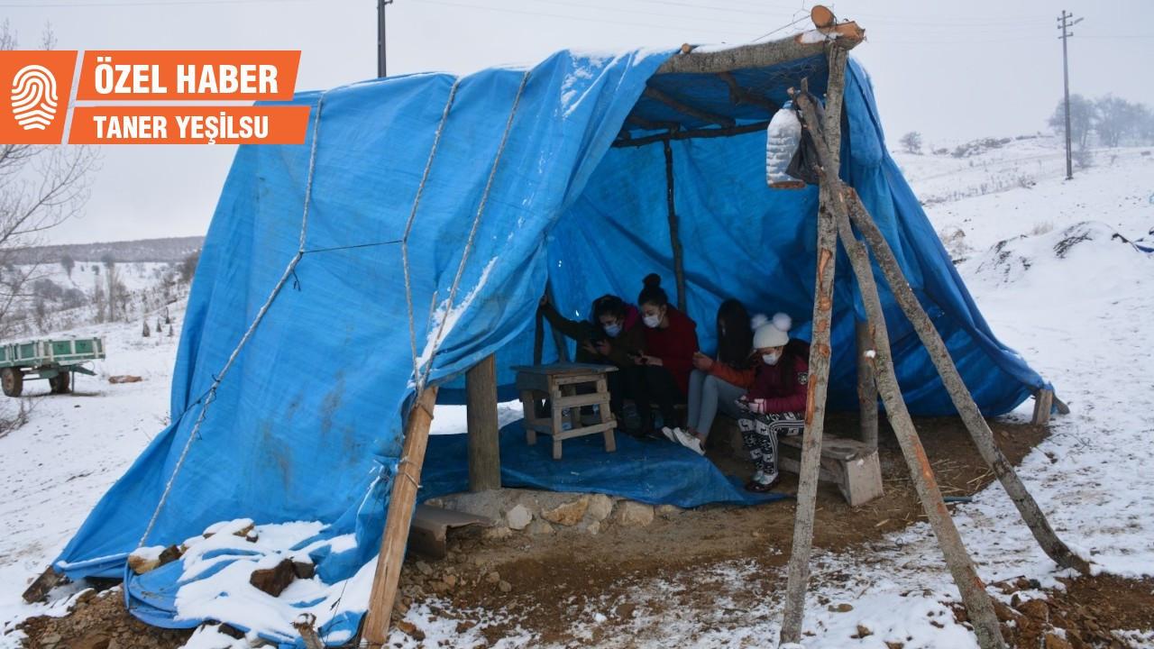 İnternet çekmeyen köyde öğrenciler, EBA için dağa çadır kurdu
