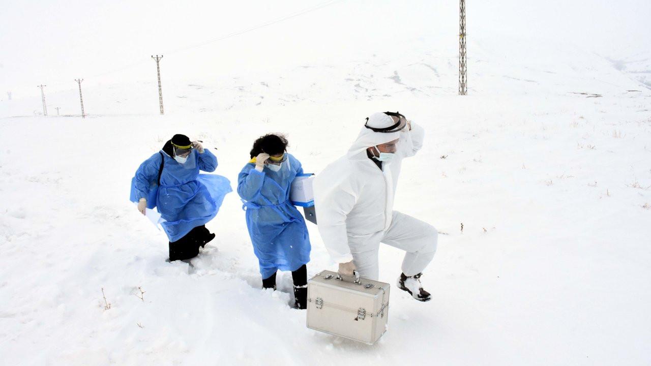 Korona aşısı için tipide 2 kilometre yürüdüler