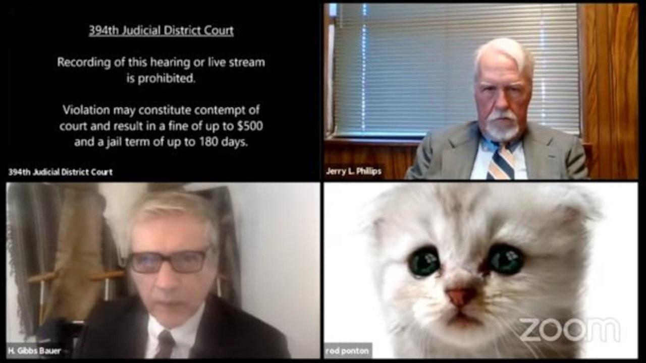 Duruşmada yanlışlıkla 'kedi filtresi' açan avukat: 'Ben kedi değilim'