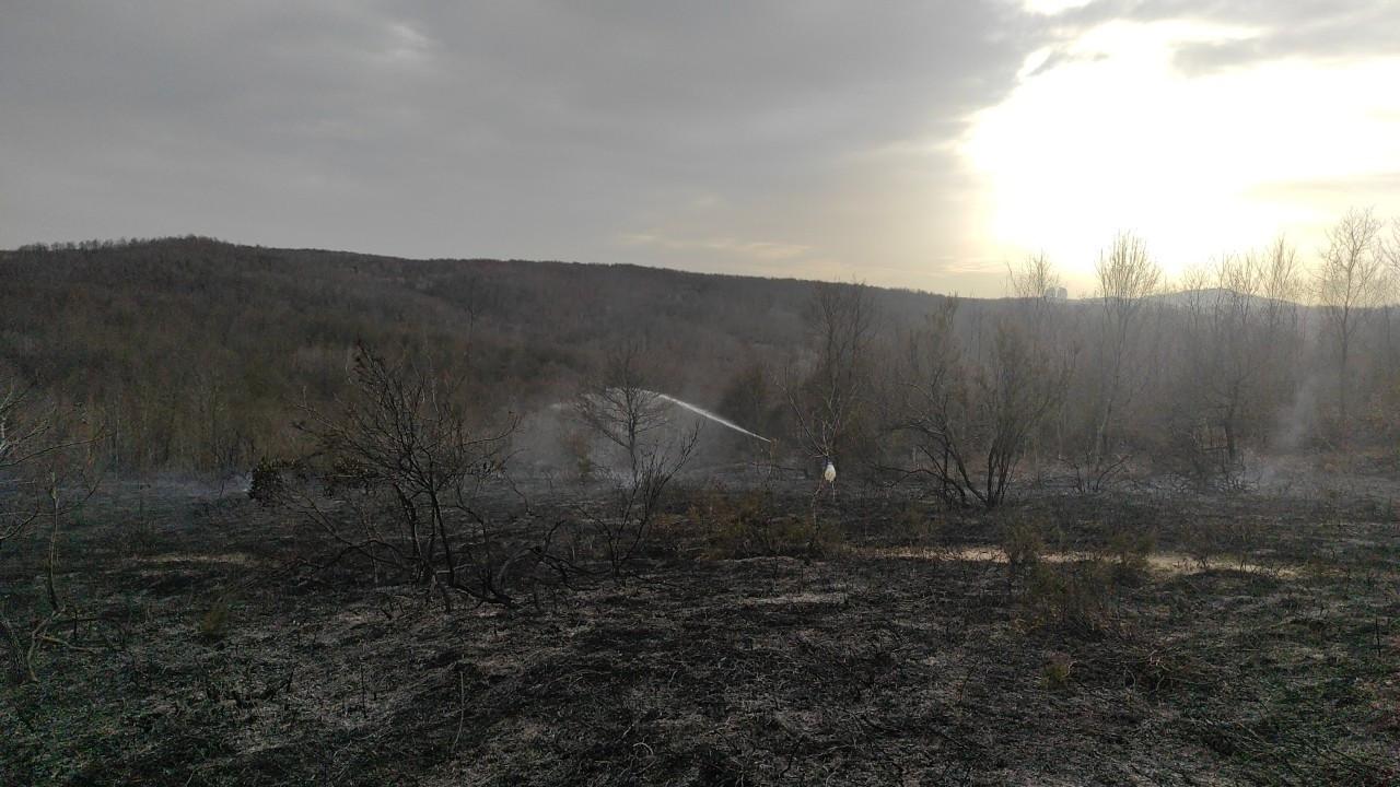 Beykoz'daki orman yangını kontrol altına alındı