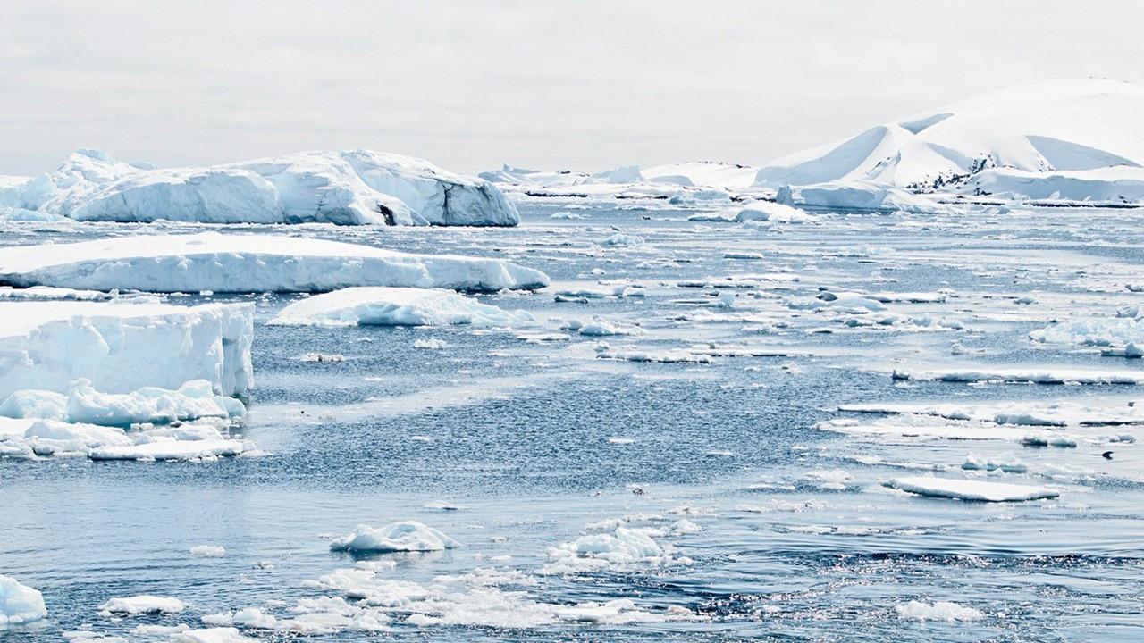 Antarktika'da Güneş ışığının erişmediği noktalarda hayat keşfedildi