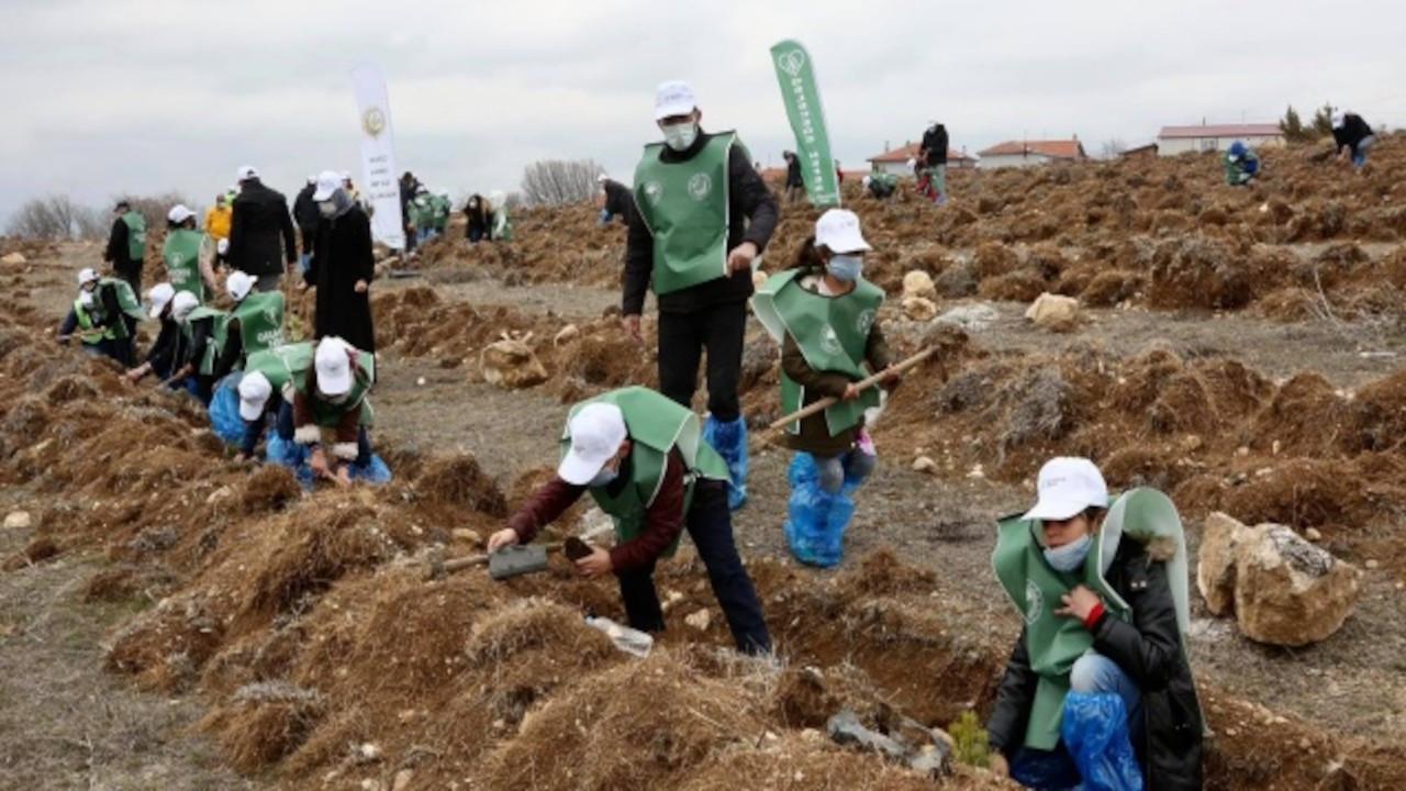 Çorum'da yaşayan sığınmacı çocuklar fidan dikti