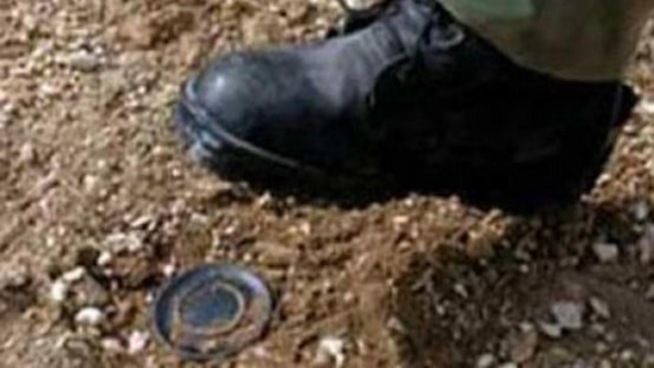 Şırnak milletvekillerinden 'mayınlı ölümler araştırılsın' talebi