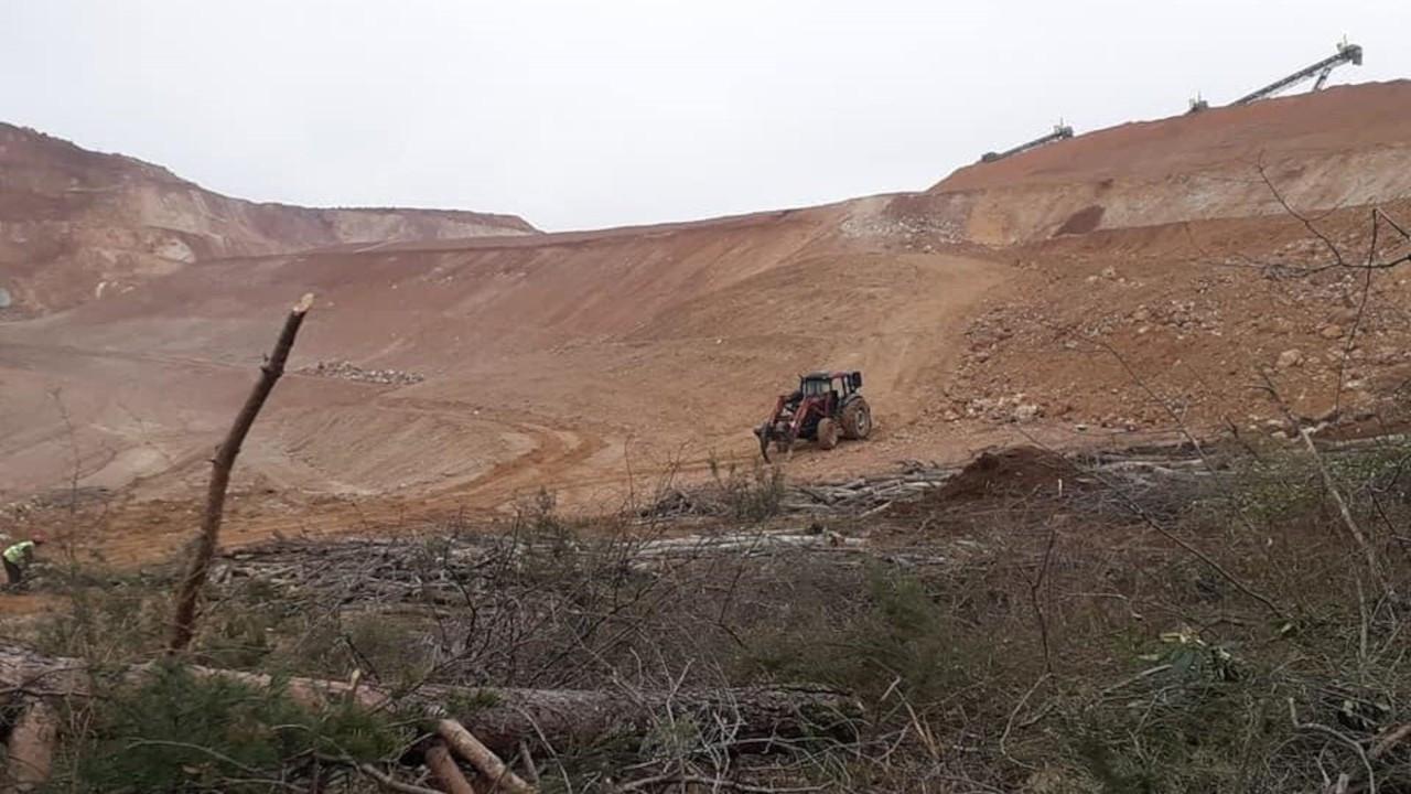 Fatsa'da maden şirketi sokağa çıkma yasağında ağaç kesti
