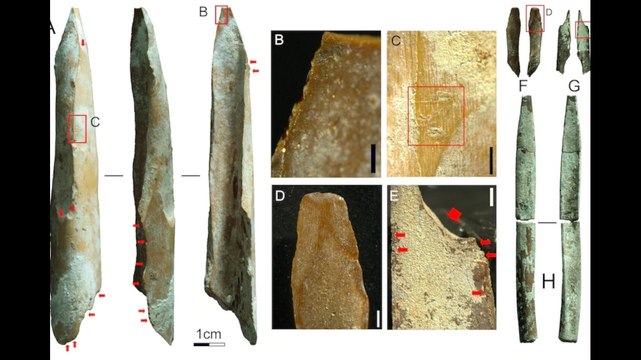 Kanguru kemiğinden aletlerin yaşı tespit edildi: En az 35 bin yıl