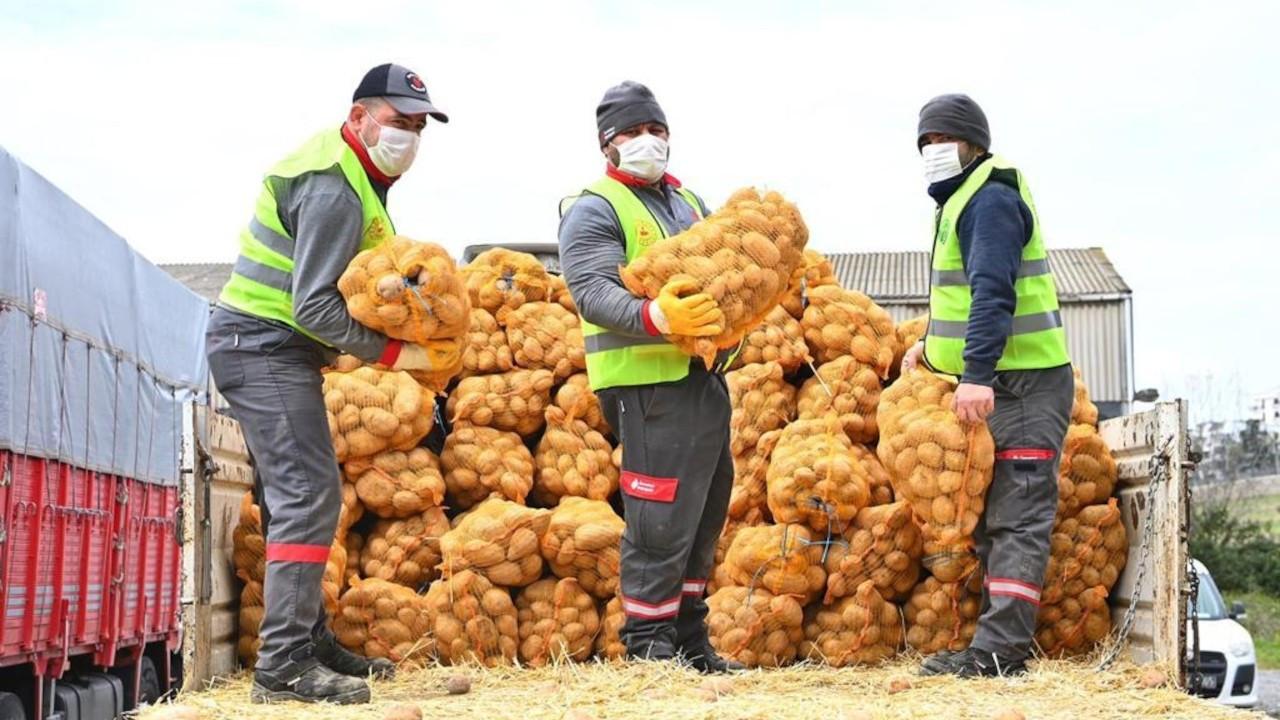 CHP'li Gürer: Patates alımında siyasi ayrımcılık yapılıyor