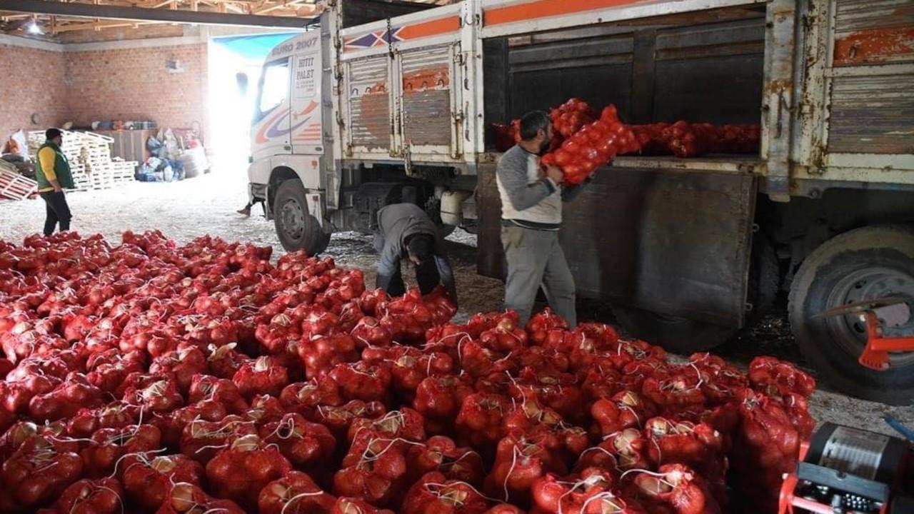 CHP'li Ayhan Barut: Soğan tarlada kaldı