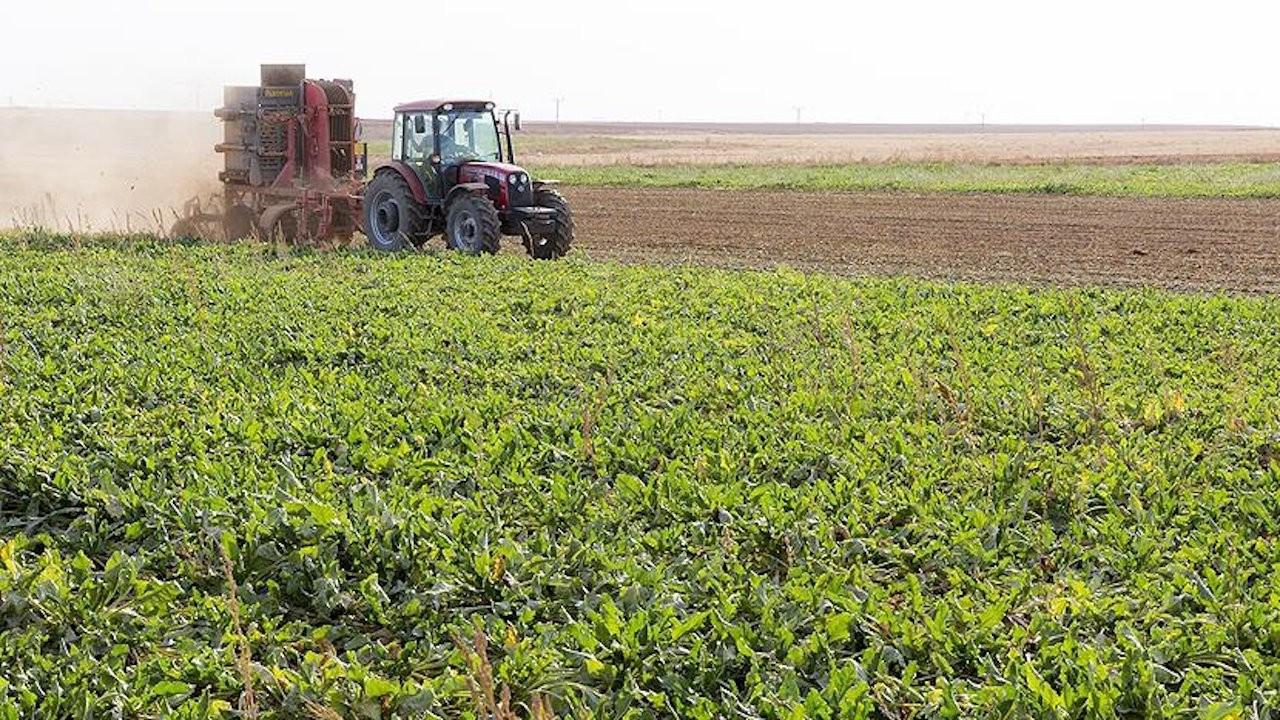 Tarım enflasyonu 20 ayın zirvesinde