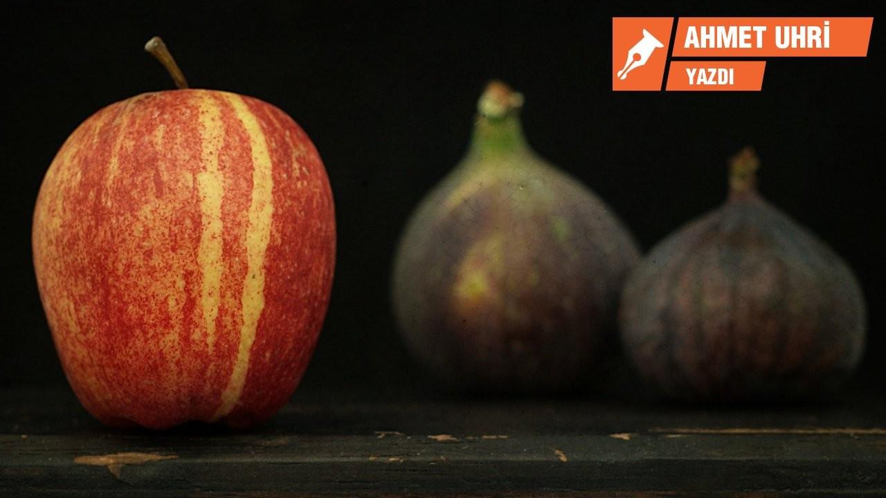 Ruhunda savaş dolaşan meyveler: Elma ve incir