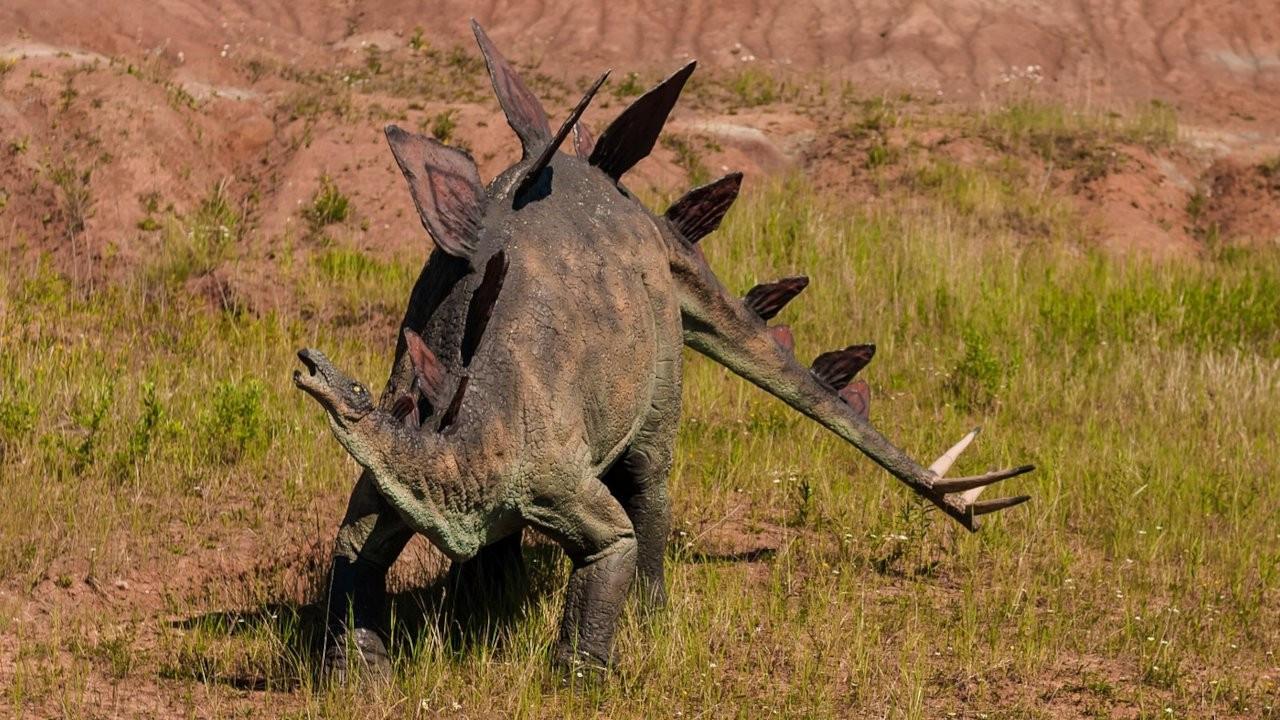 Bebek dinozora ait 100 milyon yıllık ayak izi bulundu