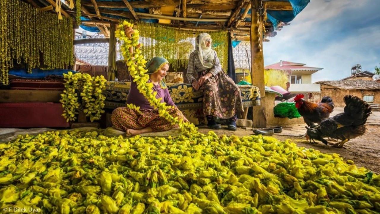 F. Dilek Uyar'a 2021 Pink Lady Yemek Fotoğrafı Yarışması'ndan ödül