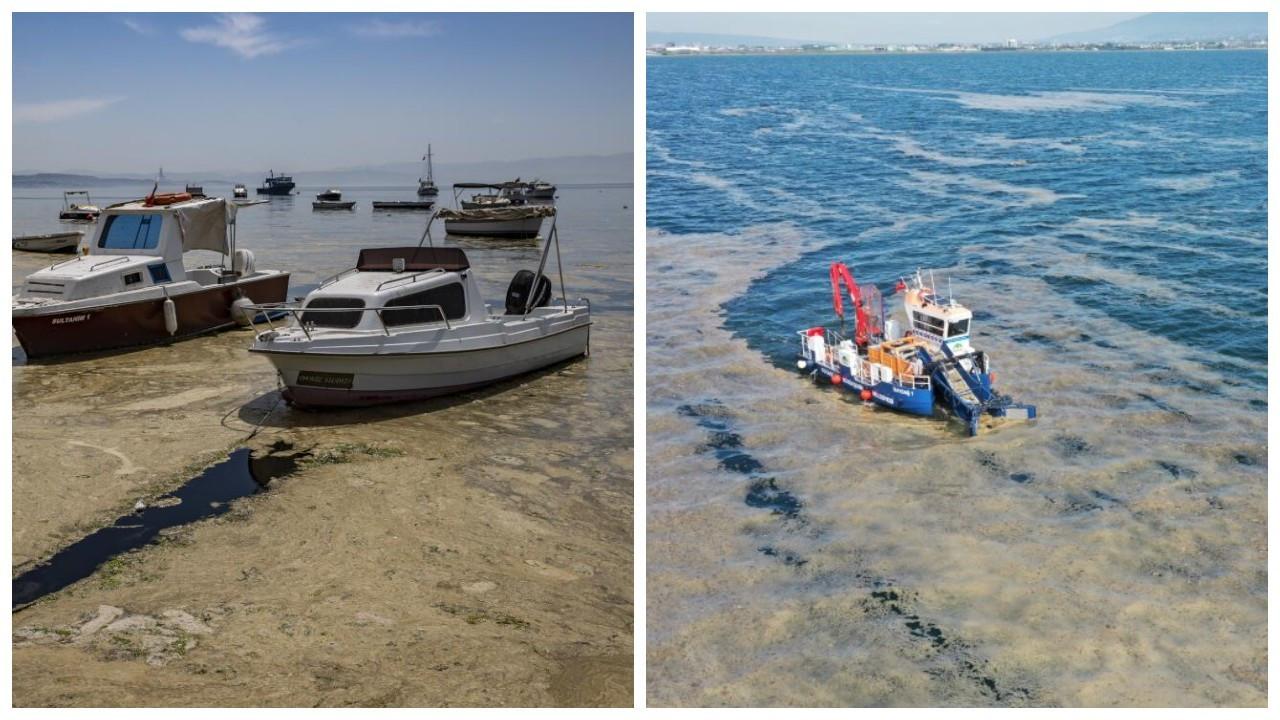 Bostancı sahilinde de müsilaj görüldü: Denizin dibi kaplanmaya başladı