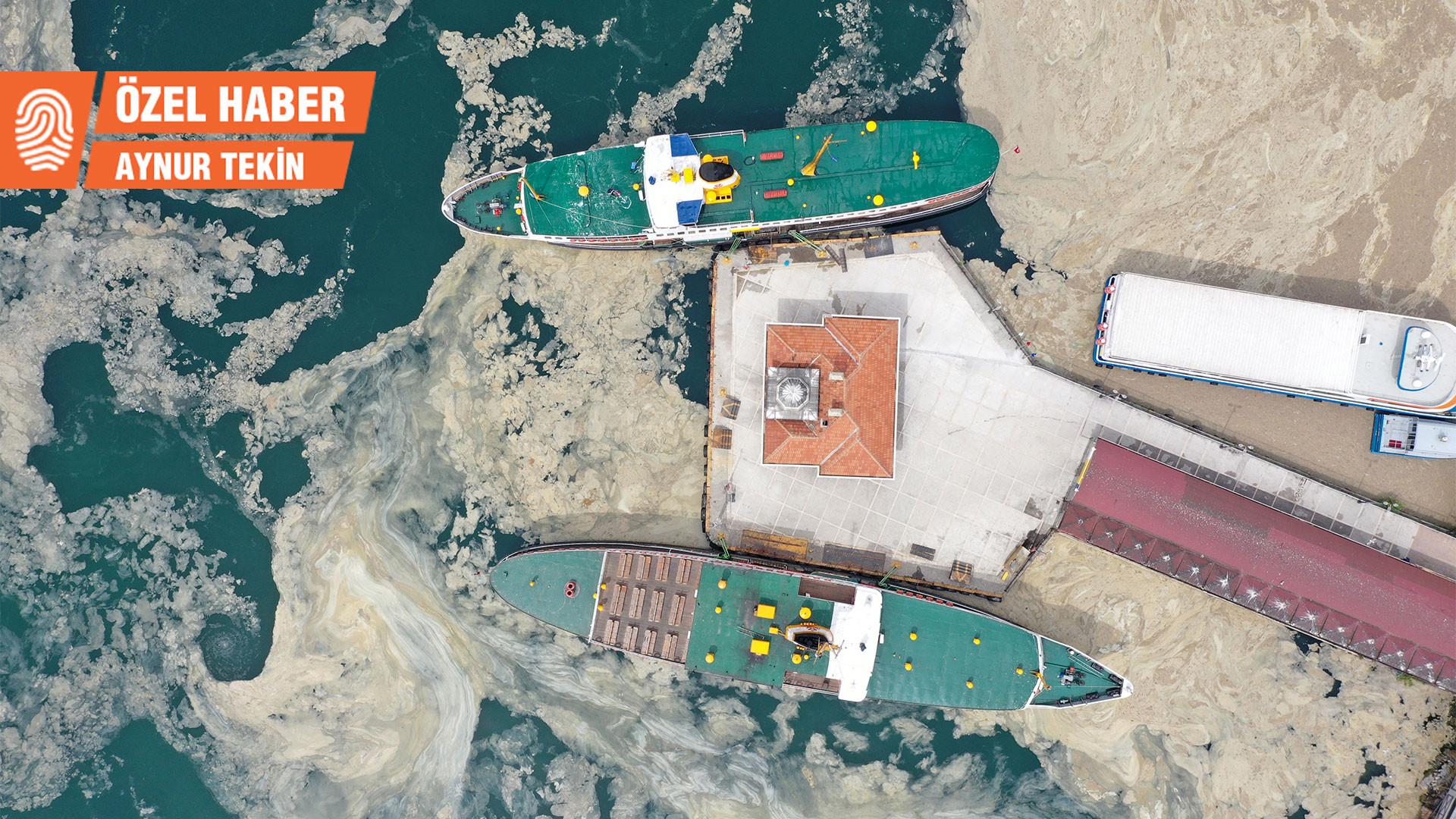 Marmara Denizi'nde müsilaj: Balıkçılığı vurdu, turizmi de vurabilir
