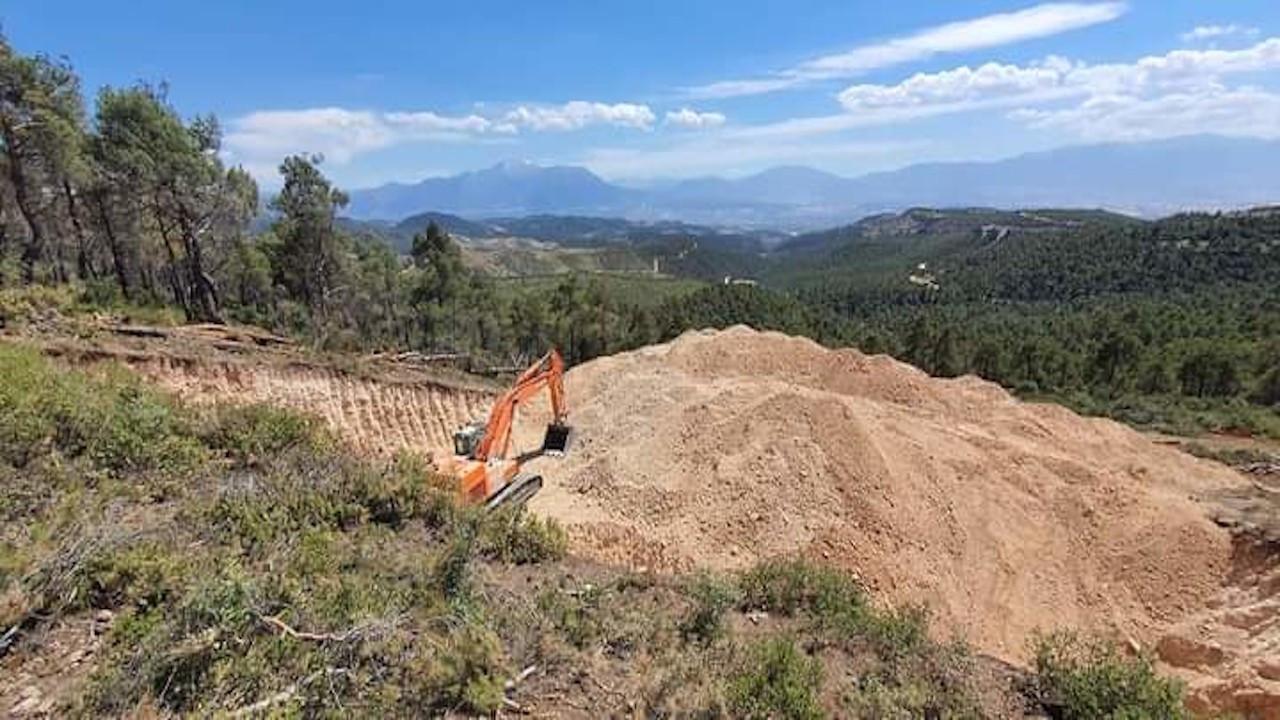 Kekik üretim merkezinde taş ocağı talanı: Onlarca ağaç kesildi