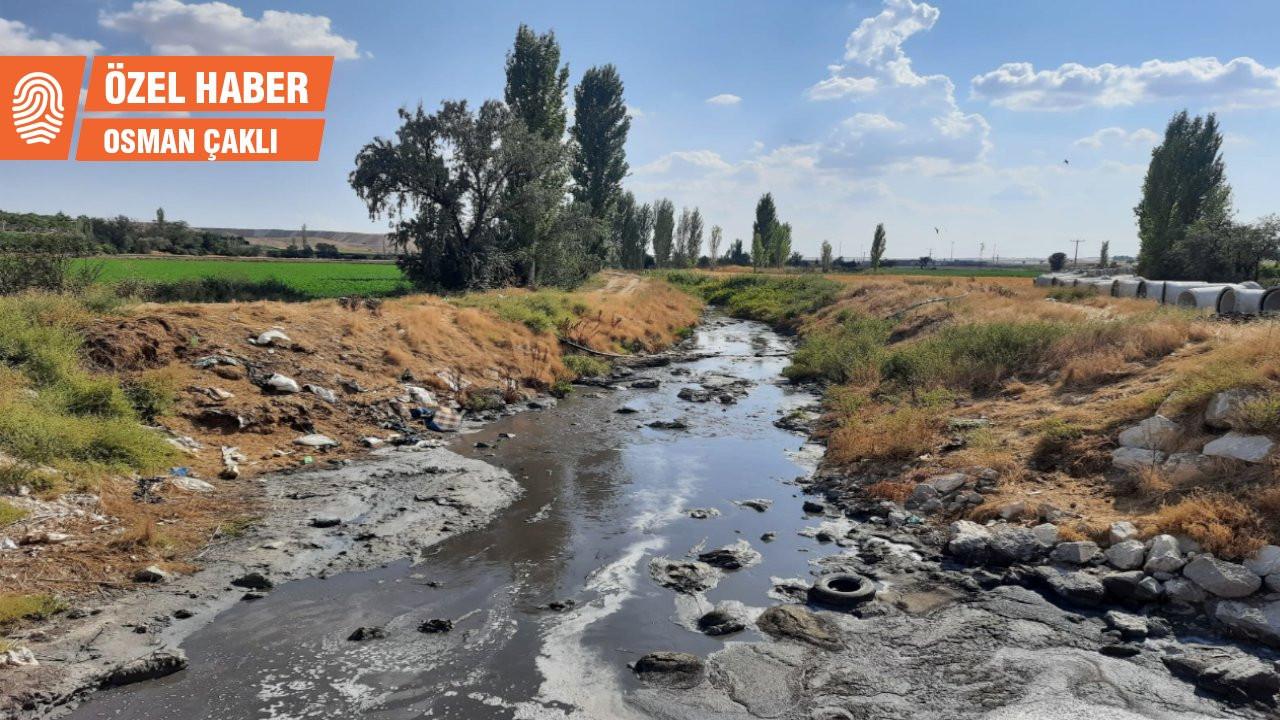 Dokuzsele 40 yıldır temiz değil: Sulu tarım iyi de su kirli