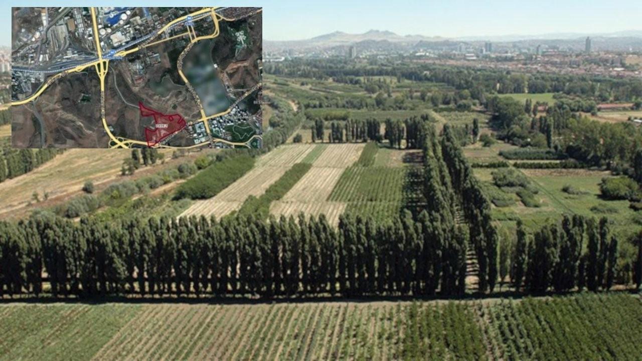 Mahkeme, Atatürk Orman Çiftliği'nde yapılaşmaya izin vermedi