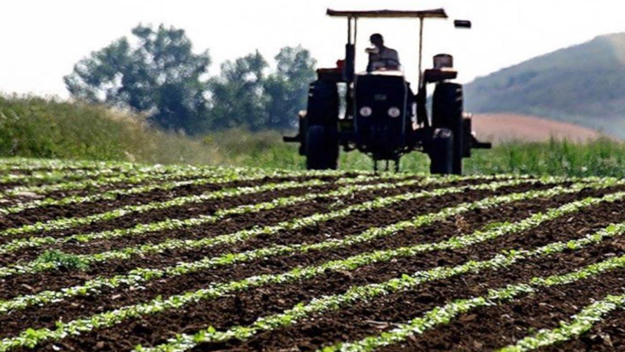 Çorum'da tarım arazisi 550 bin hektara düştü