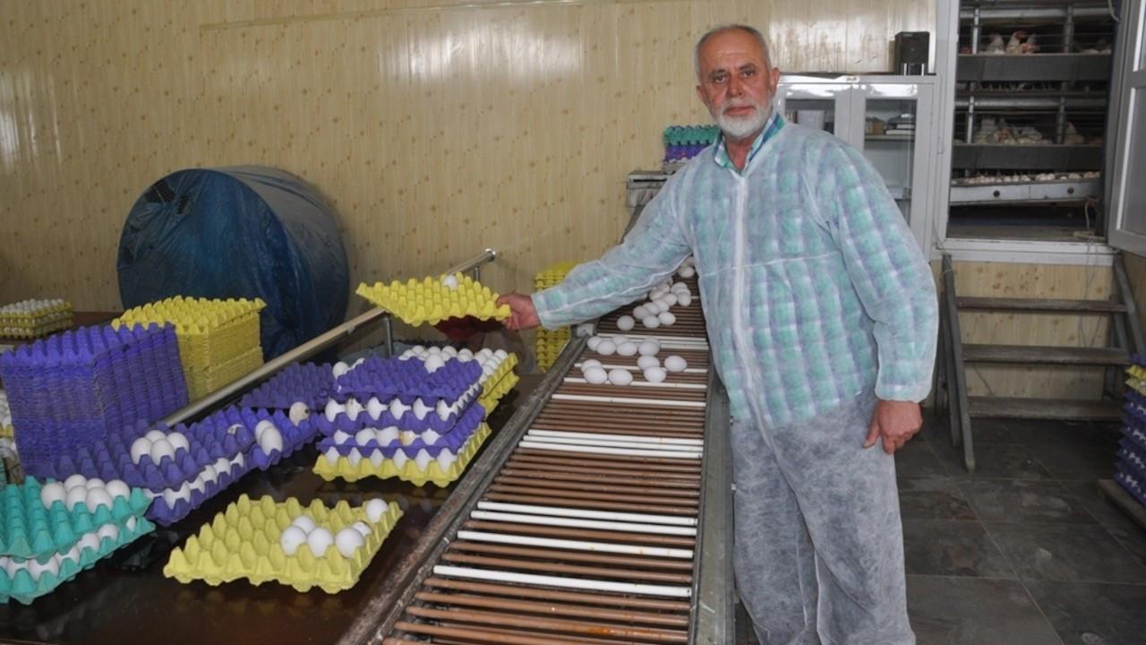 Yumurta üreticisi: 3 harfli marketler üreticiye baskı yapıyor