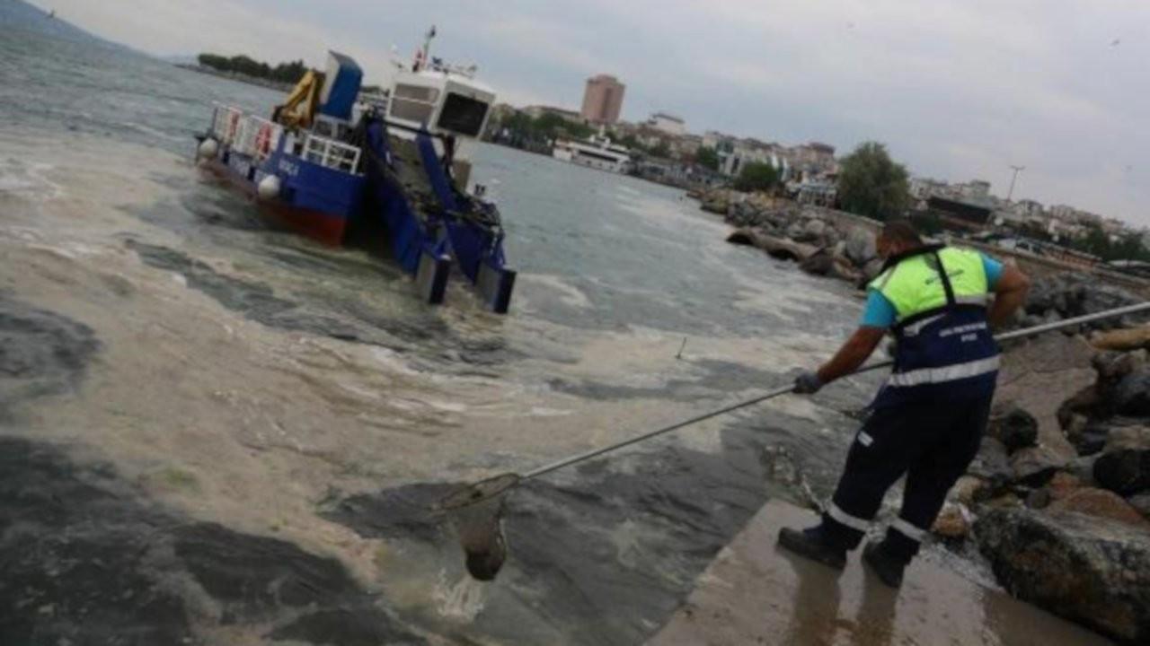 İstanbul'da müsilaj temizliği başlatıldı