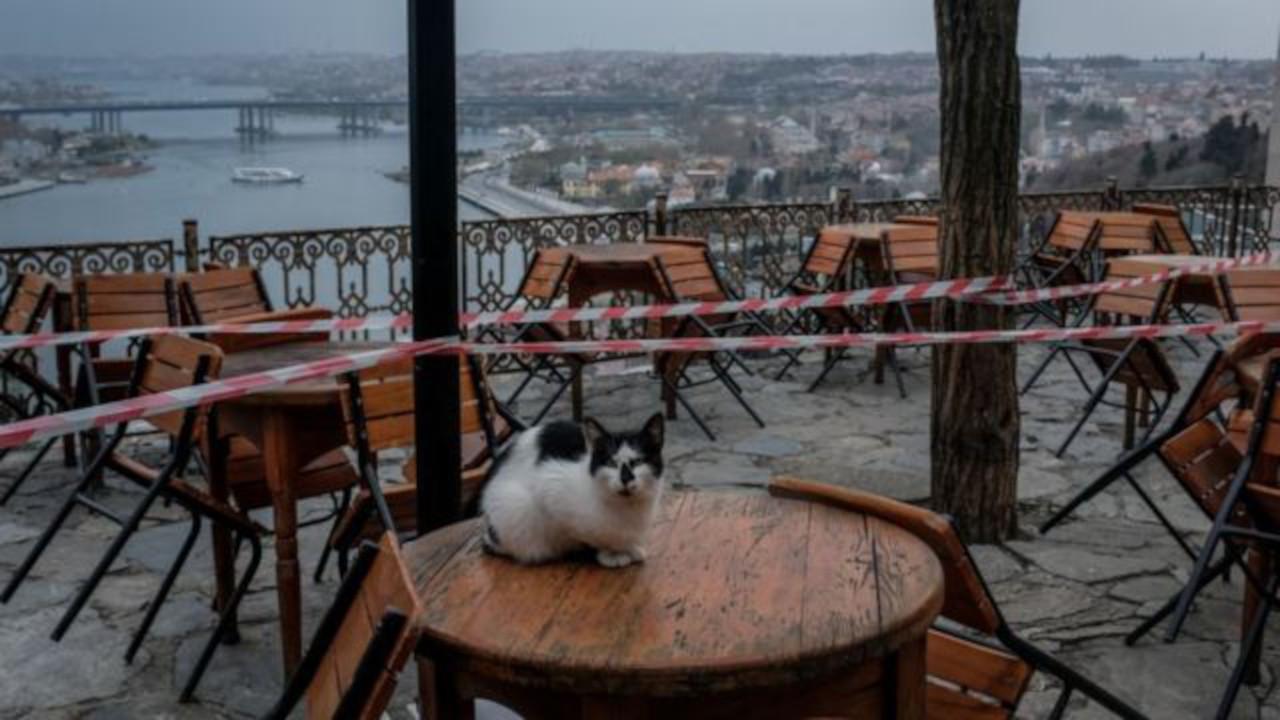 Türk yetkili Reuters'a konuştu: Kafeler açılacak, maskesiz hayat yakın