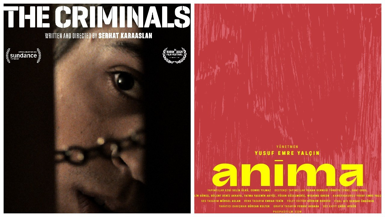 İstanbul Film Festivali Ulusal Belgesel Yarışması Ödülleri verildi