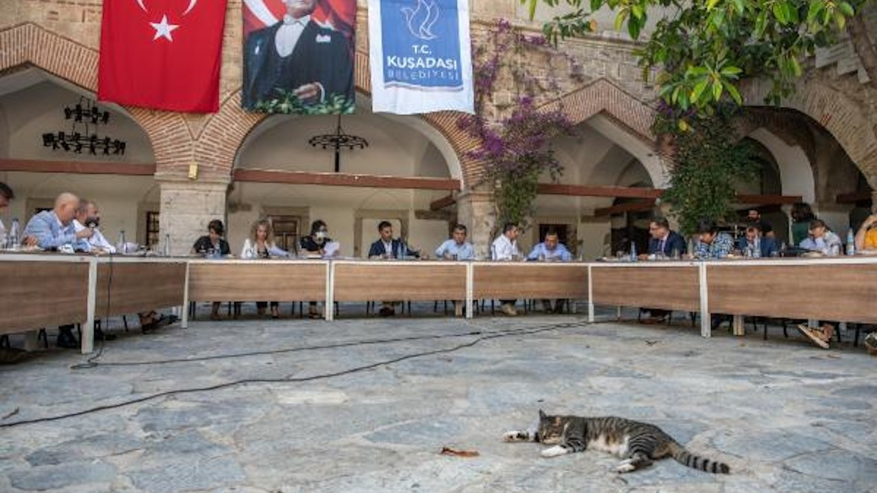 Kuşadası'nda evcil hayvan satışı yasaklandı: Tarihi karar
