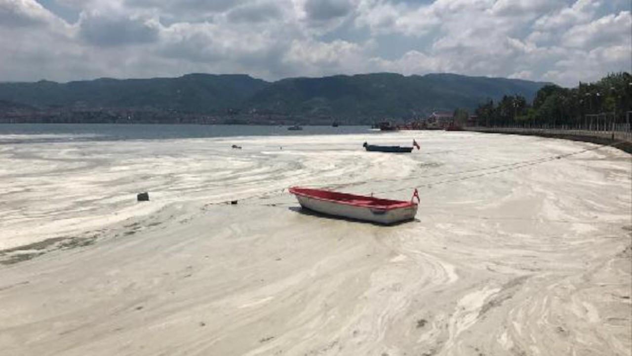 Doç. Dr. Muharrem Balcı: Marmara Denizi foseptik çukuru haline geldi