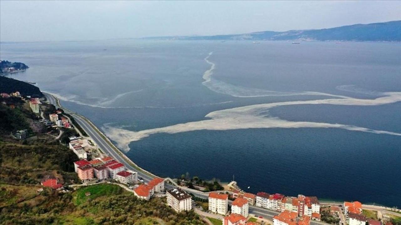 Prof. Dr. Ayaz: Müsilaj Ege Denizi'ne doğru akıyor