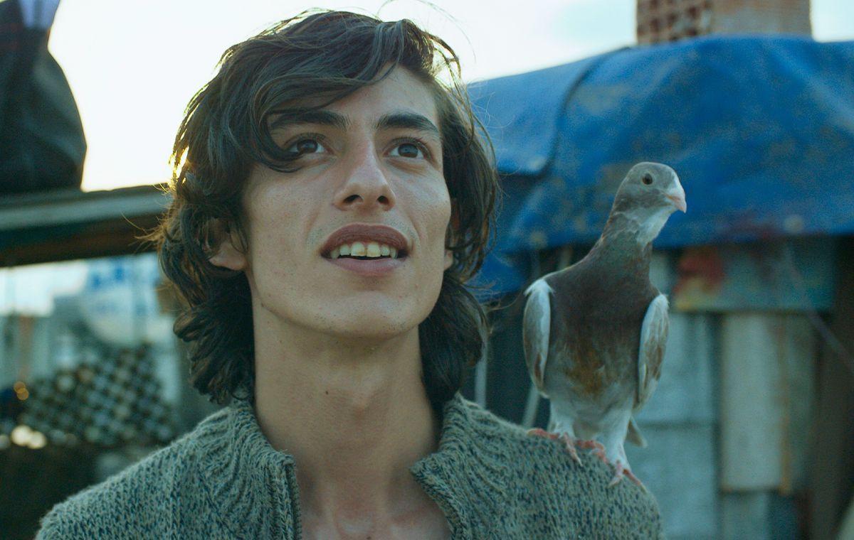 BluTV'den ödüllü yerli filmler seçkisi - Sayfa 3