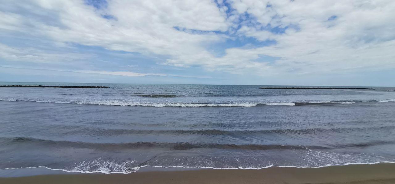 Karadeniz alarm veriyor: Deniz salyası Fatsa'da da görüldü - Sayfa 3