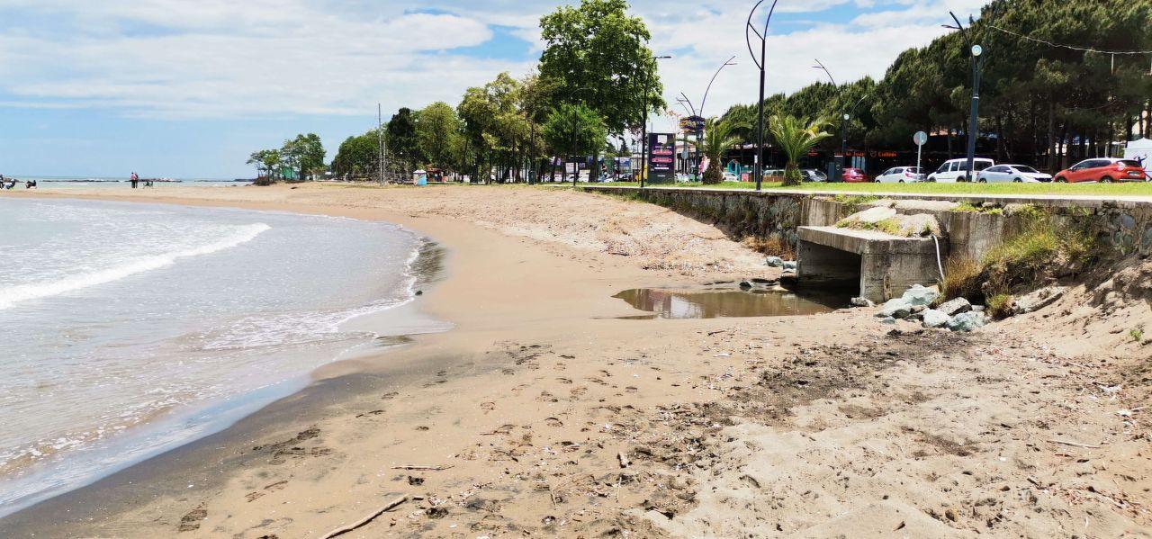Karadeniz alarm veriyor: Deniz salyası Fatsa'da da görüldü - Sayfa 4