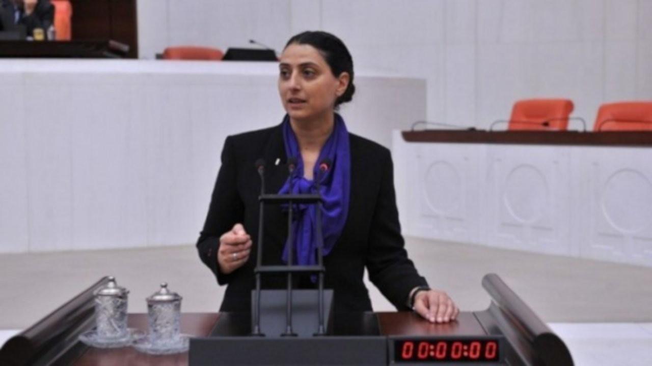 HDP'li Uca: Irak Kürdistan Bölgesel Yönetimi'ndeki ağaçların kesilip Türkiye'de satıldığı doğru mu?