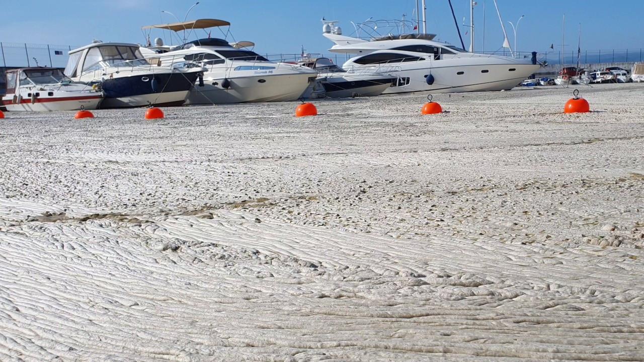 Deniz salyası git gide artıyor: Bütün marina betonla kaplı gibiydi