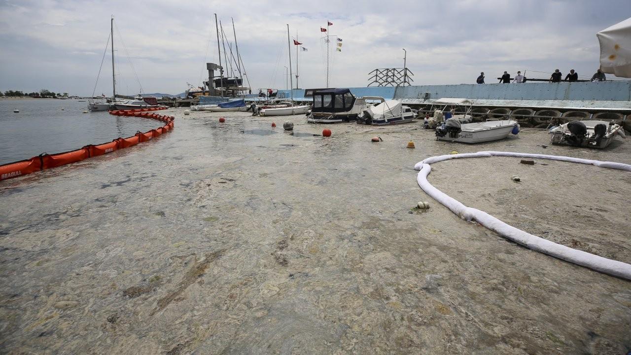 Kurum: Marmara Denizi'ni 'Koruma Alanı' ilan edeceğiz