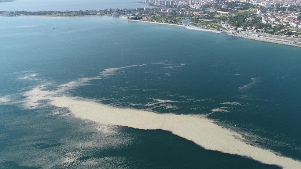 Müsilaj adası sahile yaklaşıyor - Sayfa 3
