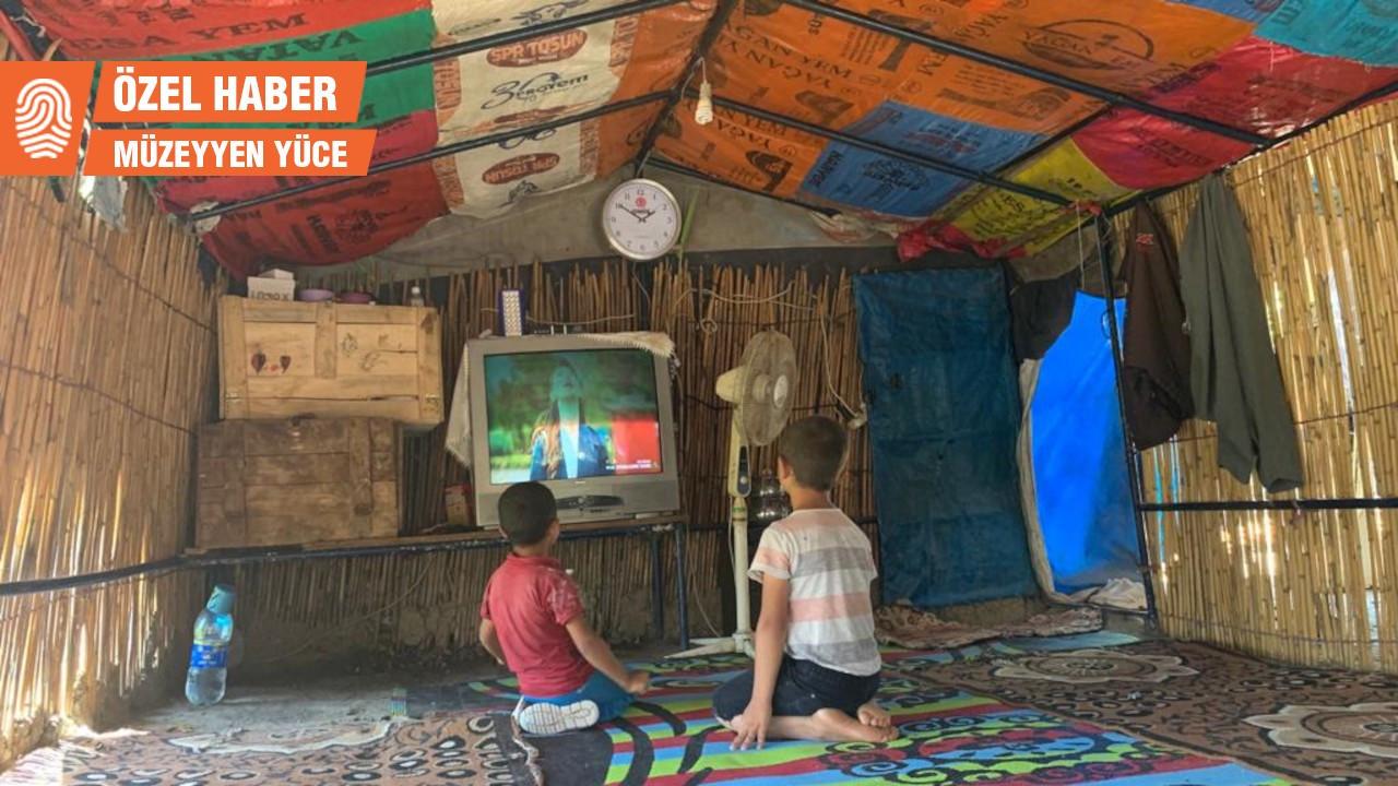 Tarımın görünmez işçileri: Çadırda'yerleşik'hayat