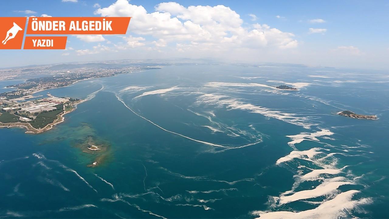 Müsilaj komisyonu Marmara Denizi'ni kurtarabilir mi?