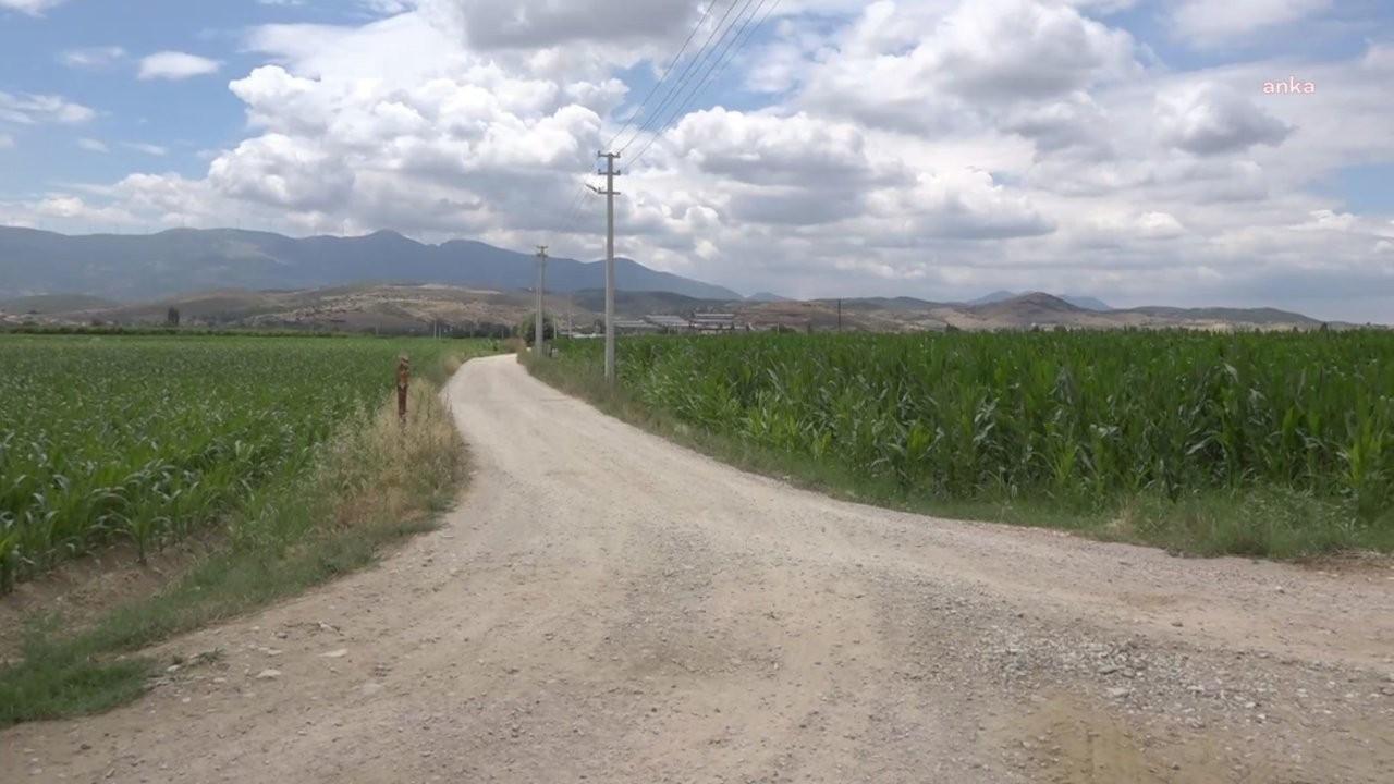Borç yüzünden elektriği kesilen çiftçiler: Ürün tarlada yanıyor