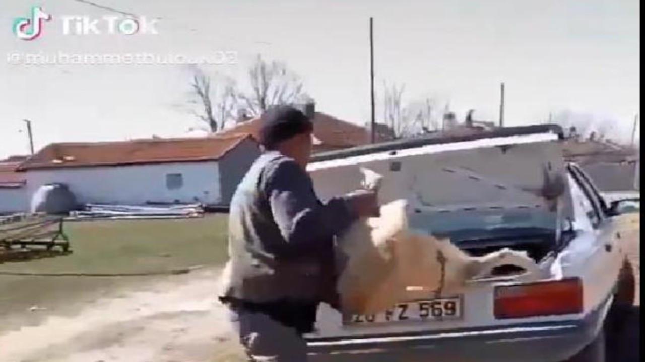 Köpeğini bagaja kilitleyip Tiktok'ta paylaşan kişiye para cezası