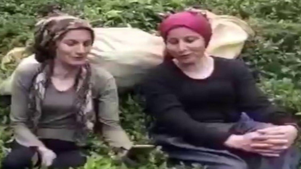 İkizdereli kadınlardan türkü: Katliam yeri midur İkizdere dağları?