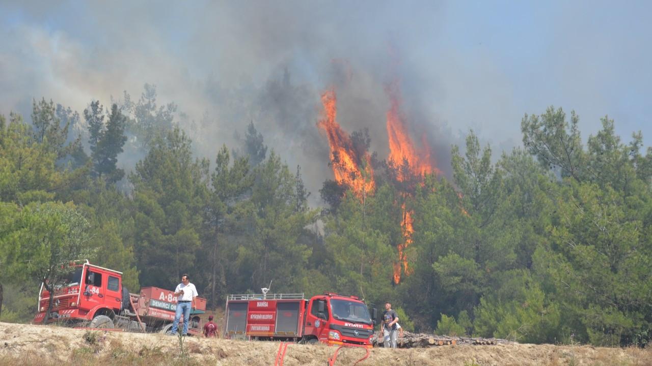 Manisa'nın iki ilçesinde orman yangını çıktı