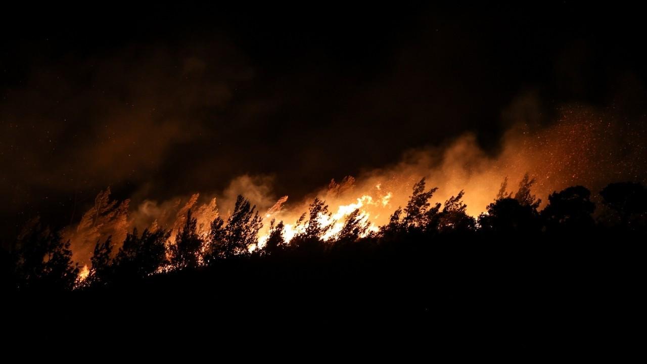 İzmir'deki orman yangını kısmen kontrol altına alındı