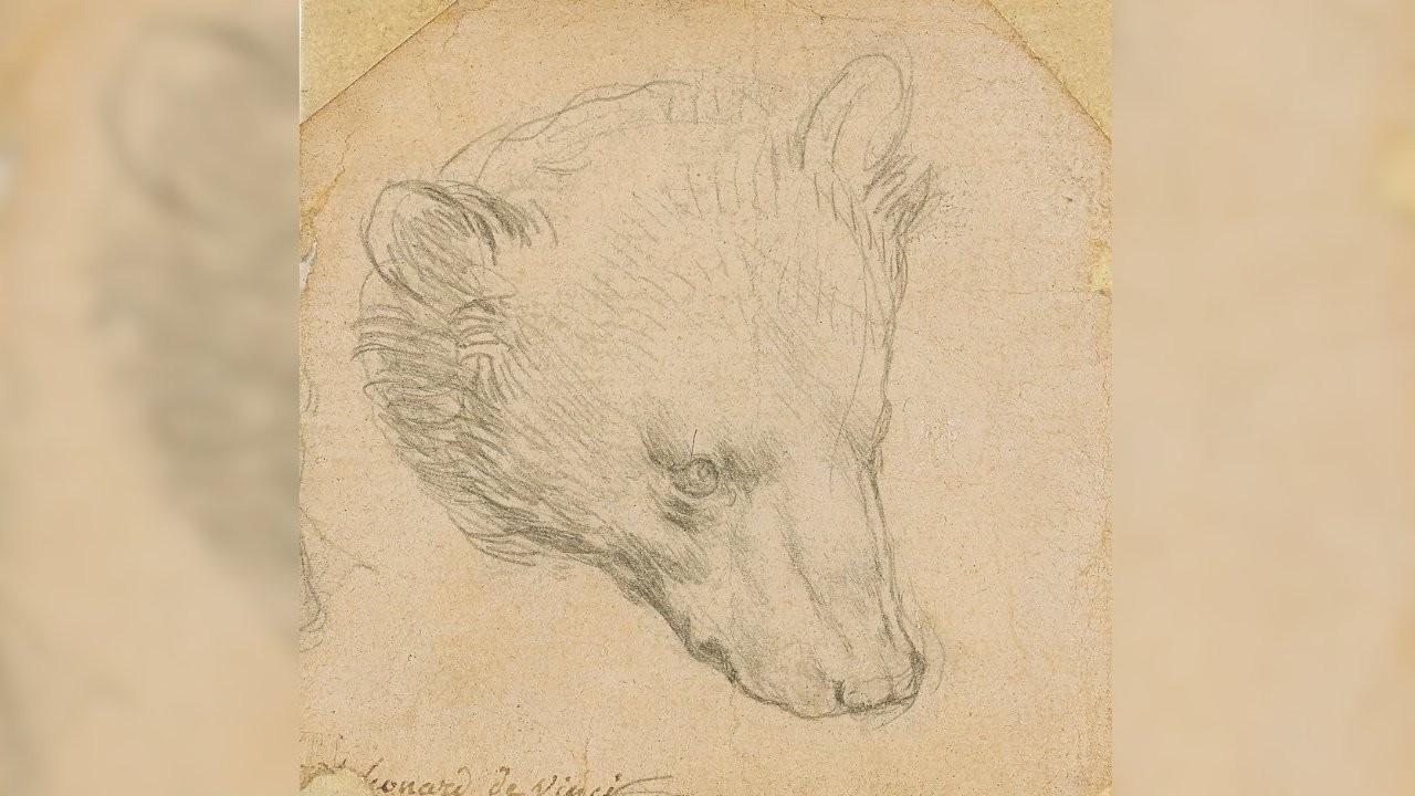 Leonardo Da Vinci'nin ayı çizimi 12 milyon dolara satıldı