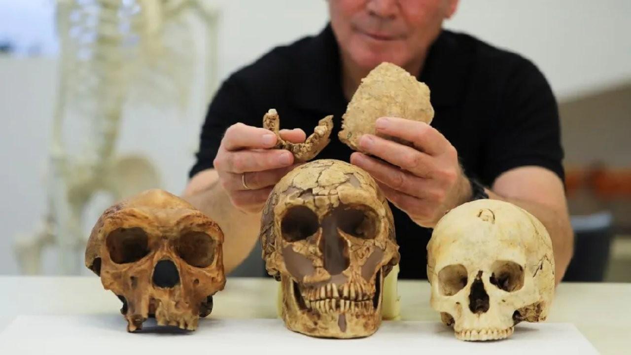 İsrail'de keşfedilen antik insan türü hakkında neler biliniyor?