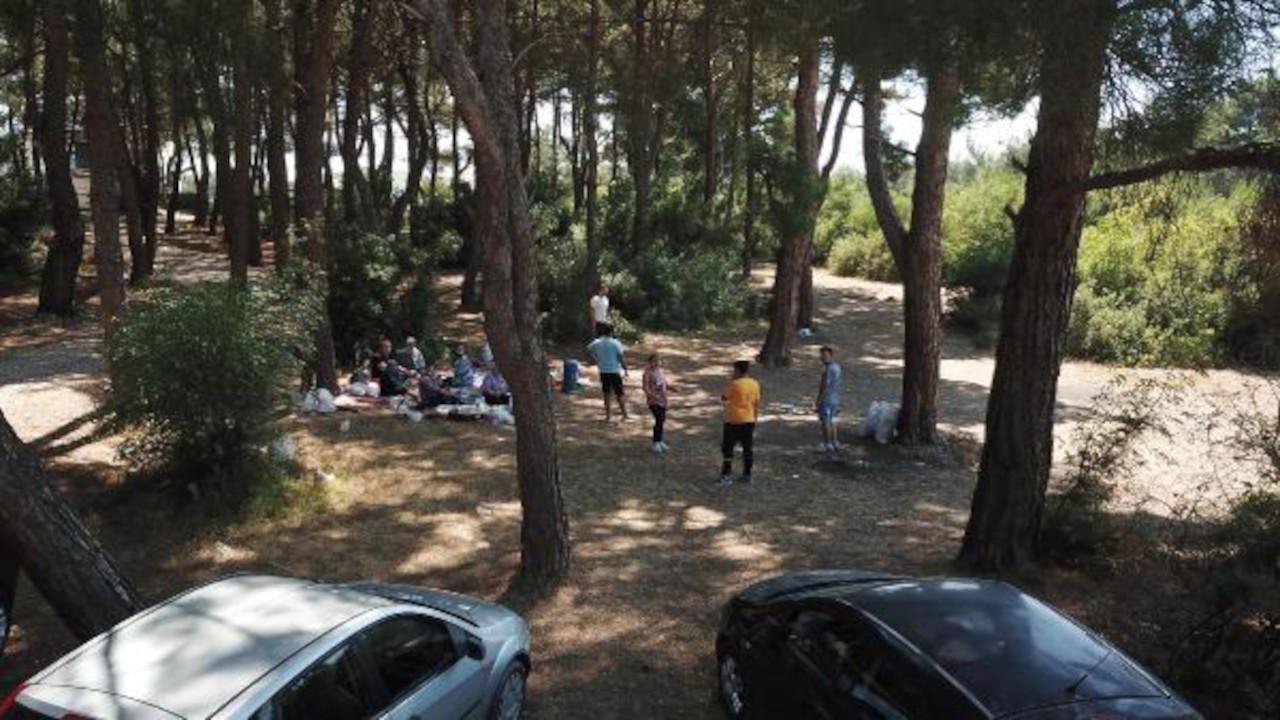 İzmir'de ormanlarda piknik yasağı