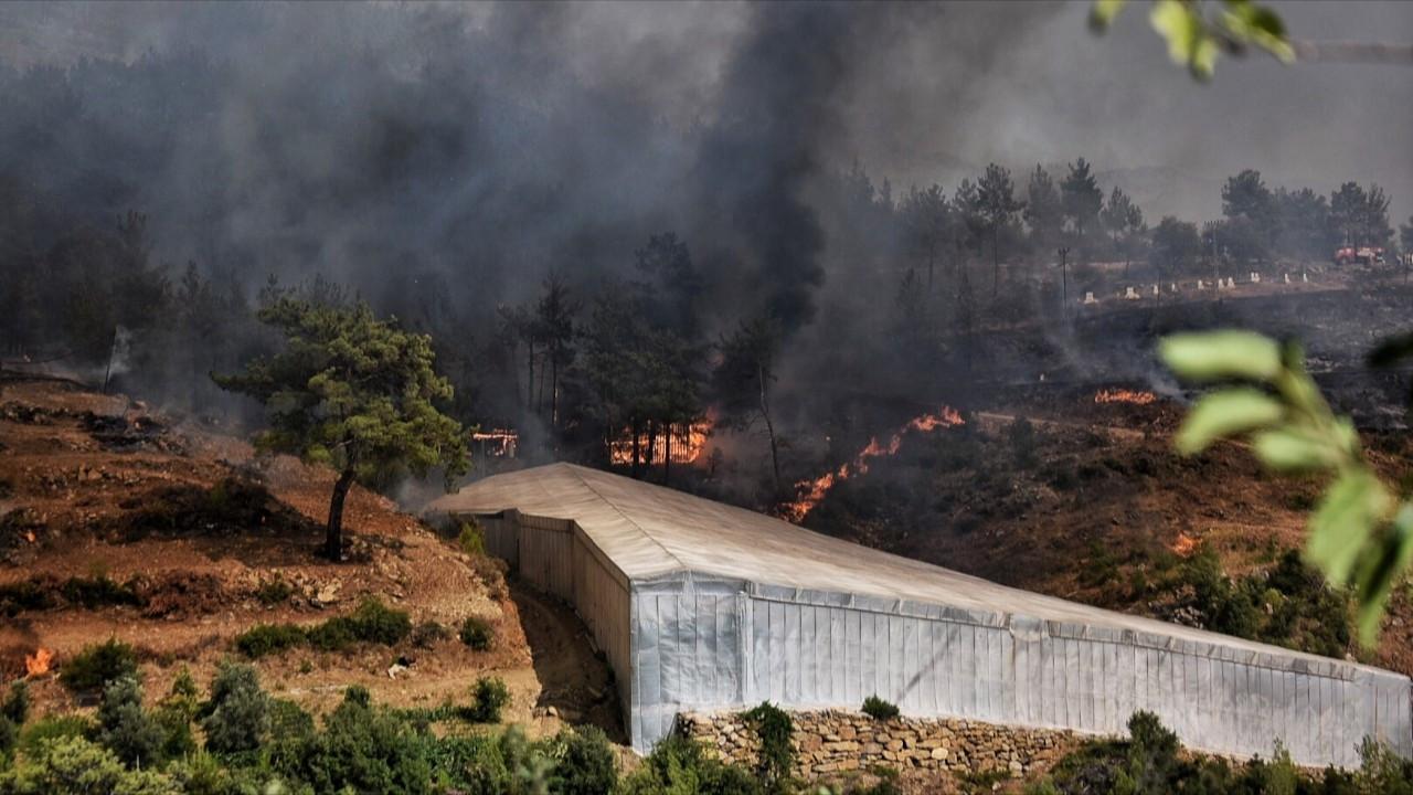 Mersin'de orman yangını: 'Riskli bir yangınla karşı karşıyayız'